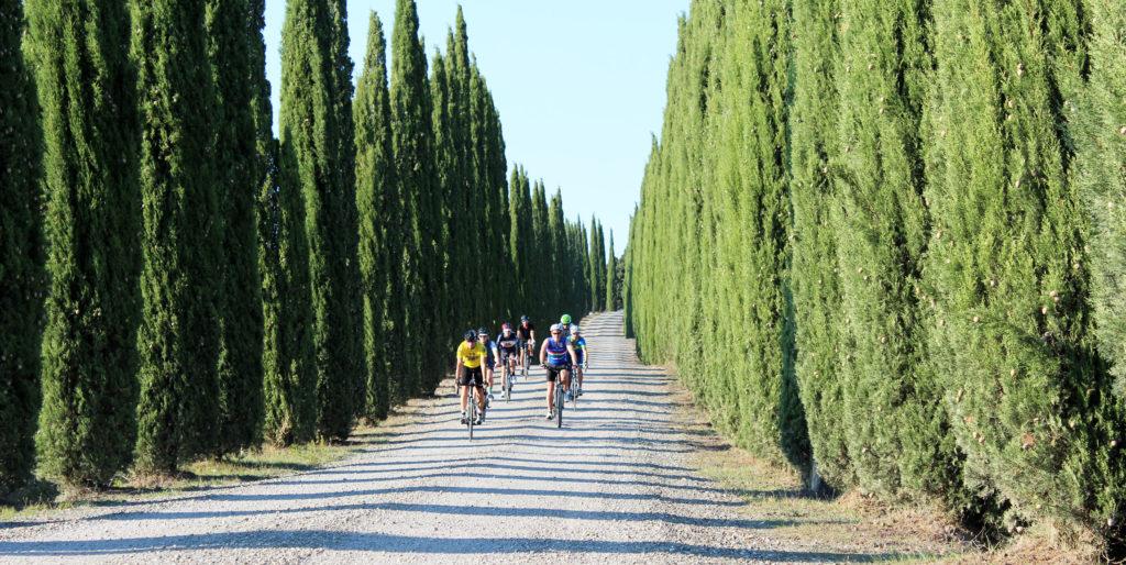 montalcino in bicicletta